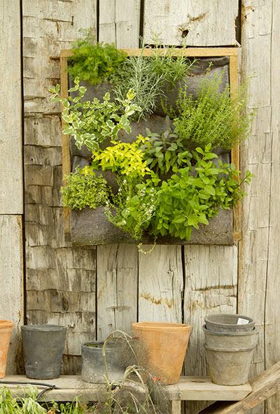 Terrain - Vertical Garden